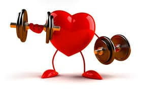 Cardiovascular Health and the Importance of Exercise